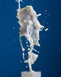 Splash milk Stock Photos