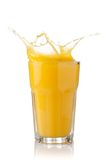 Splash of orange juice in a glass Royalty Free Stock Photo