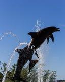 Splash and Play royalty free stock photo
