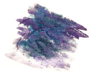 Splash purple, green paint blot watercolour color water ink isol Stock Photography