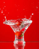 A Splash of Red Stock Photography