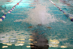 Splash in the swimming pool Royalty Free Stock Images
