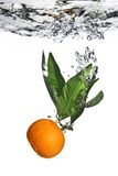Splash of tangerine to water. With bubbles of air Royalty Free Stock Image