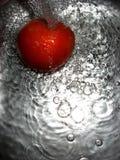 Splash of water. On tomato Stock Photos