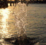 Splash water backlit. Evening rest on the sea Royalty Free Stock Photo