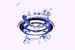 Splash water forms a water-crown. Royalty Free Stock Images