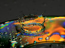Splash of water is frozen Stock Photography