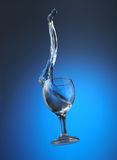 Splash in water in a glass. For wine on a dark blue gradient a background Stock Photo