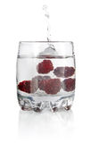 Splash water in glass with blackberry Stock Photos
