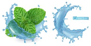 Splash water and mint. 3d vector. Splash water and mint. 3d realistic vector royalty free illustration