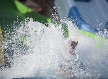 Splash of water from person in pool Stock Photos