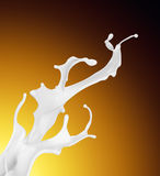 Splash of white fat milk as design element Stock Photography