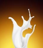 Splash of white fat milk as design element Stock Image
