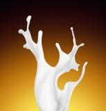 Splash of white fat milk as design element Royalty Free Stock Photography