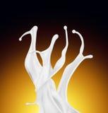 Splash of white fat milk as design element Stock Images