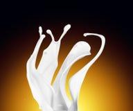 Splash of white fat milk as design element Royalty Free Stock Image