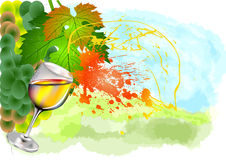 Splash of white wine Royalty Free Stock Image
