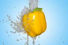 Splash with yellow pepper Royalty Free Stock Images