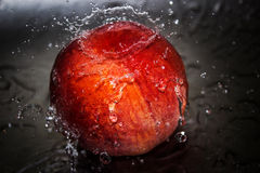 Splashed peach Stock Images