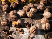 Splashed walnuts Stock Image