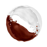 Splashes of chocolate and milk merge on white background Stock Images