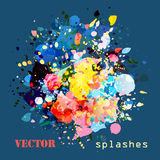 Splashes colorful paints Royalty Free Stock Image