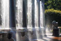 Splashes of fountains, the Lion cascade controlam lit by sunligh Stock Photos