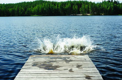 Splashes on the lake Royalty Free Stock Photography