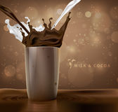 Splashes of milk with cocoa and chocolate Royalty Free Stock Photos
