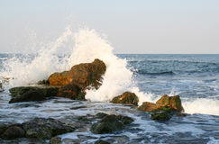 Splashes of the sea. Wave on the stones Royalty Free Stock Photos