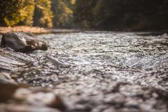 Mountain river. Splashes of water, a mountain stream flowing over rocks Royalty Free Stock Photo