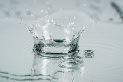 Splashes of water Royalty Free Stock Photo