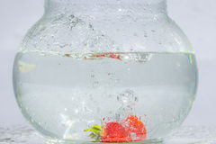 Splashes and Whirls of Strawberries Thrown in Water Tank Royalty Free Stock Image