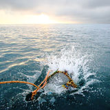 Splashing creel in the sea at dawn Royalty Free Stock Photo