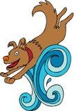 Splashing Dog Stock Images