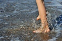 Splashing. Feeds are splasing in water Stock Image