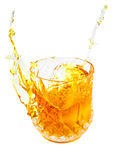 Splashing golden liquor(whisky,rum,bourbon) Royalty Free Stock Image
