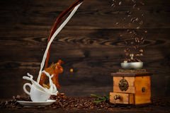 Splashing liquid of coffee and milk into white cup on wooden table Royalty Free Stock Photos