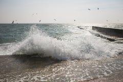 Splashing sea water on spring stormy day Royalty Free Stock Image