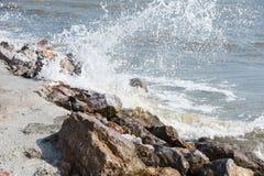 Splashing sea wave hitting rocks on the beach shore. Stock Photo