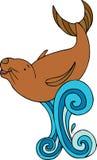 Splashing Seal Royalty Free Stock Photos