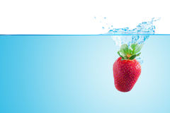 Splashing strawberry. Splashing strawberry,  on the white background Stock Images