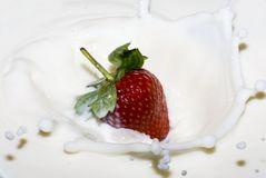 Splashing strawberry into a milk Royalty Free Stock Photography