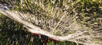 Splashing water to water the lawn as a background royalty free stock photography