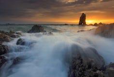 Splashing wave with beautiful sunset Royalty Free Stock Images