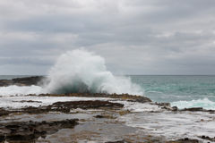 Splashing wave on New Zealand coastline Royalty Free Stock Photos