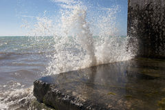 Splashing Wave Royalty Free Stock Images