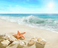 Splashing waves on the beach. Stock Photos