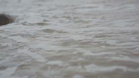 Splashing waves. Close-up of splashing sea waves anf foam stock video footage