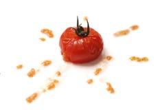 Splat do tomate Imagem de Stock
